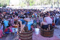 Invitan a participar de la tradicional Fiesta de la Vendimia en Vicuña este 24 de febrero