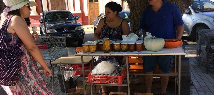 Una nueva versión del mercado campesino  se realizó en la plaza Gabriela Mistral de Vicuña