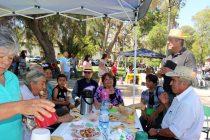 Invitan a participar de tradicional mateada mistraliana en plaza de Vicuña