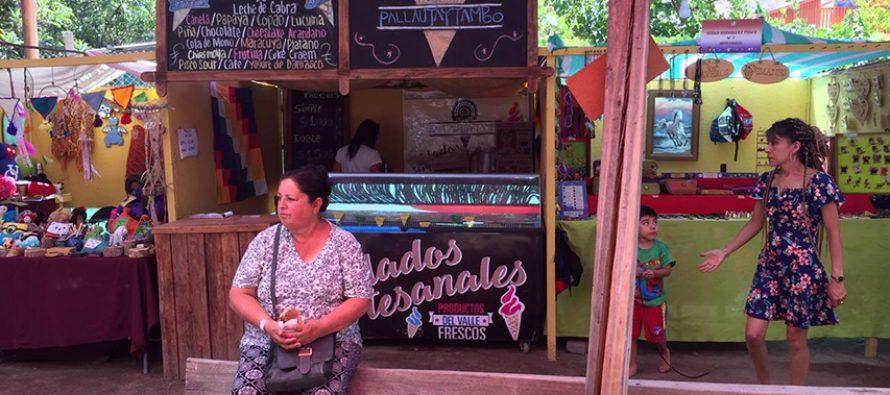 Feria Costumbrista de Paihuano rescata las tradiciones y  potencia emprendimientos locales