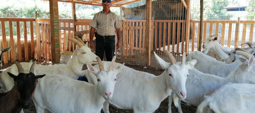 El exjefe de retén de Carabineros de El Molle que se convirtió en agricultor y criancero