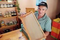 """Apicultor de Pisco Elqui, Sergio Araya: """"Mis abejas me llenan de felicidad"""""""