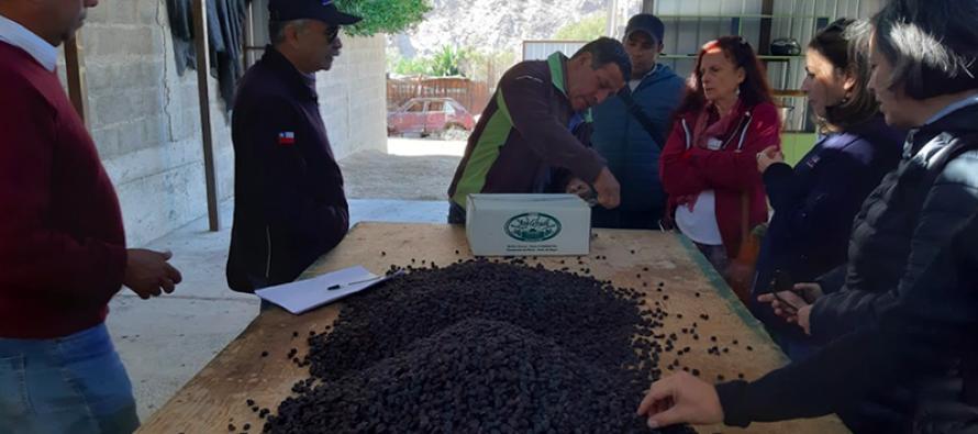 Dirigentes de INDAP conocen exitosos proyectos agropecuarios y de turismo en Paihuano