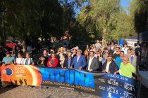 Representantes de la región de la Araucanía visitarán Vicuña para conocer la experiencia del eclipse total de sol