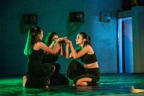 Migrantes y chilenos dan vida al Día de la Danza en Vicuña