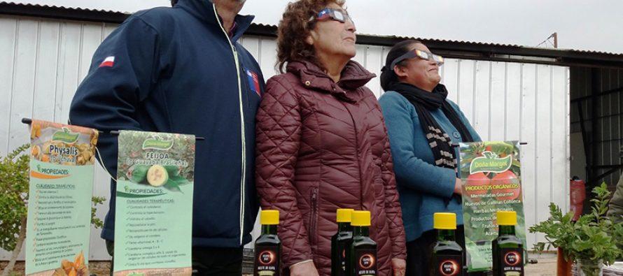 Agricultores esperan incrementar sus ventas gracias al eclipse de sol