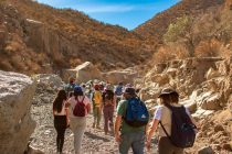 Elquinos y turistas vivieron un recorrido por la Quebrada Yungay en Vicuña