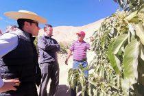 Gobernador Provincial de Elqui visitó proyectos en la comuna de Paihuano