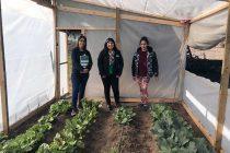 Altovalsol: Desarrollo Social y Familia junto a FOSIS buscan incentivar la autoprovisión de alimentos