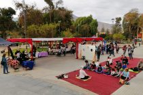 Vicuña se proyecta como un destino para actividades de turismo de bienestar