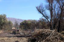 Voluntarios lesionados y perdidas millonarias en implementación sufrió Bomberos en incendio