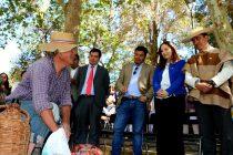 Rescates de las raíces y tradición de campo se toman la celebración de fiestas patrias en Paihuano
