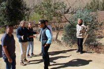 Alcalde de Paihuano responde a edil de Vicuña por la situación de terrenos