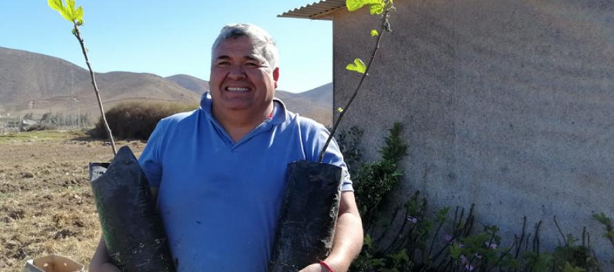 Altovalsol: Agricultor serenense apuesta por reconvertir su producción ante la escasez hídrica