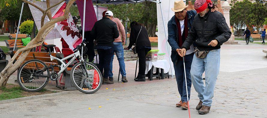 """Con gran convocatoria realizan actividad """"Me pongo en tu lugar"""" en plaza de Vicuña"""