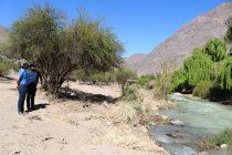 Un nuevo lugar de esparcimiento se prepara en las orillas del Rio Turbio en Rivadavia