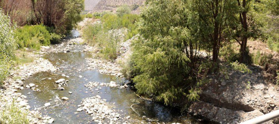Presentan inquietud por el estado hídrico del Rio Elqui en la comuna de Vicuña