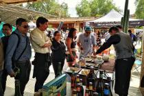Clima soleado y actividades turísticas constantes es la oferta de Vicuña para este verano