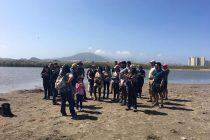 Humedal de la Desembocadura del Río Elqui: Un pulmón natural en camino a su preservación
