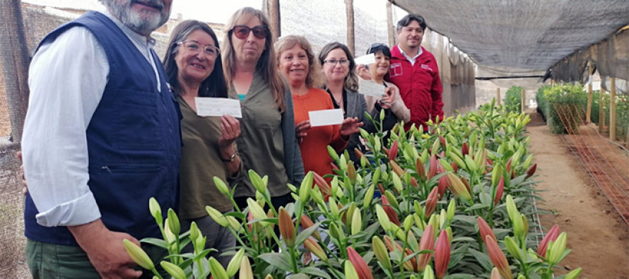 Floricultores elquinos podrán rehabilitar emprendimientos afectados por la sequía tras entrega de incentivos de INDAP