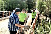 Voluntariado nacional de verano realizaron mejoras en sectores de  Paihuano