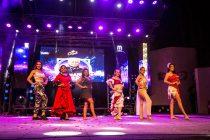 Noche de Coronación de la reina del Carnaval Elquino 2020 tendrá la actuación de DJ Méndez