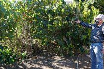 Evalúan positivamente el agua y nieve caída que apoya a agricultores y crianceros de Vicuña