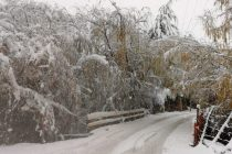 Se esperan 8mm y 15 mm en el Valle de Elqui y heladas luego de las precipitaciones