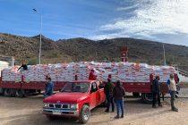 230 crianceros de la comuna de Vicuña recibieron alimentos para sus animales