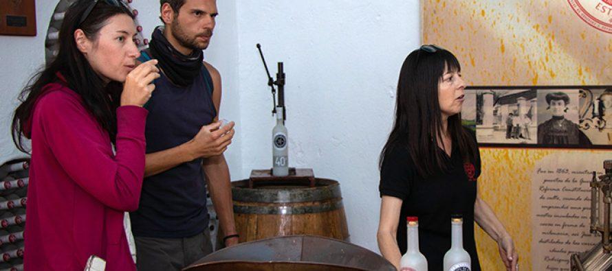 Destilerías y vitivinícolas preparan protocolos de atención ante futura reactivación del turismo en Paihuano