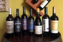 Destacan proyecto enoturístico con Argentina durante Día Nacional del Vino chileno