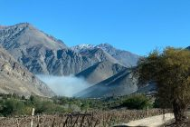Decretan Alerta Roja por incendio forestal en sector de Tres Cruces