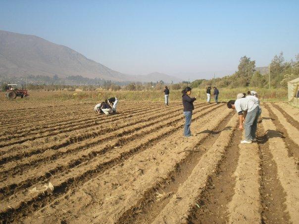 Photo of Capacitarán a vecinos de Vicuña a través de la Fundación Vida Rural de la PUC