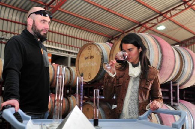 Photo of Con uva del valle del Elqui se producen dos nuevas variedades de vino en Elqui Wine
