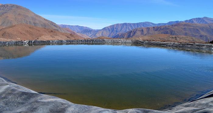 Photo of Gracias a moderno sistema de riego agricultores del Valle del Elqui disponen de forraje para el ganado