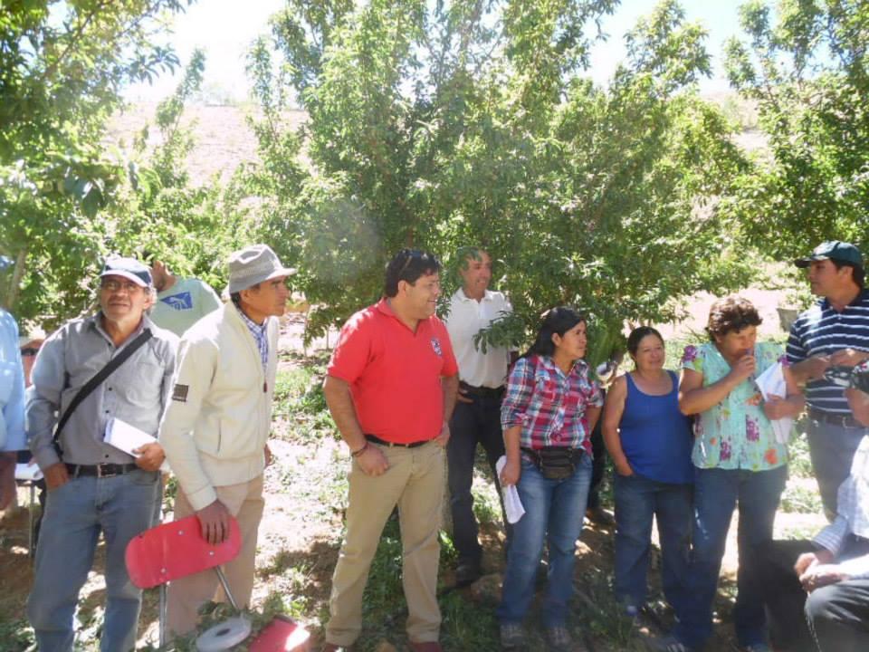 Photo of Continúan capacitaciones de programa PRODESAL para agricultores de Paihuano