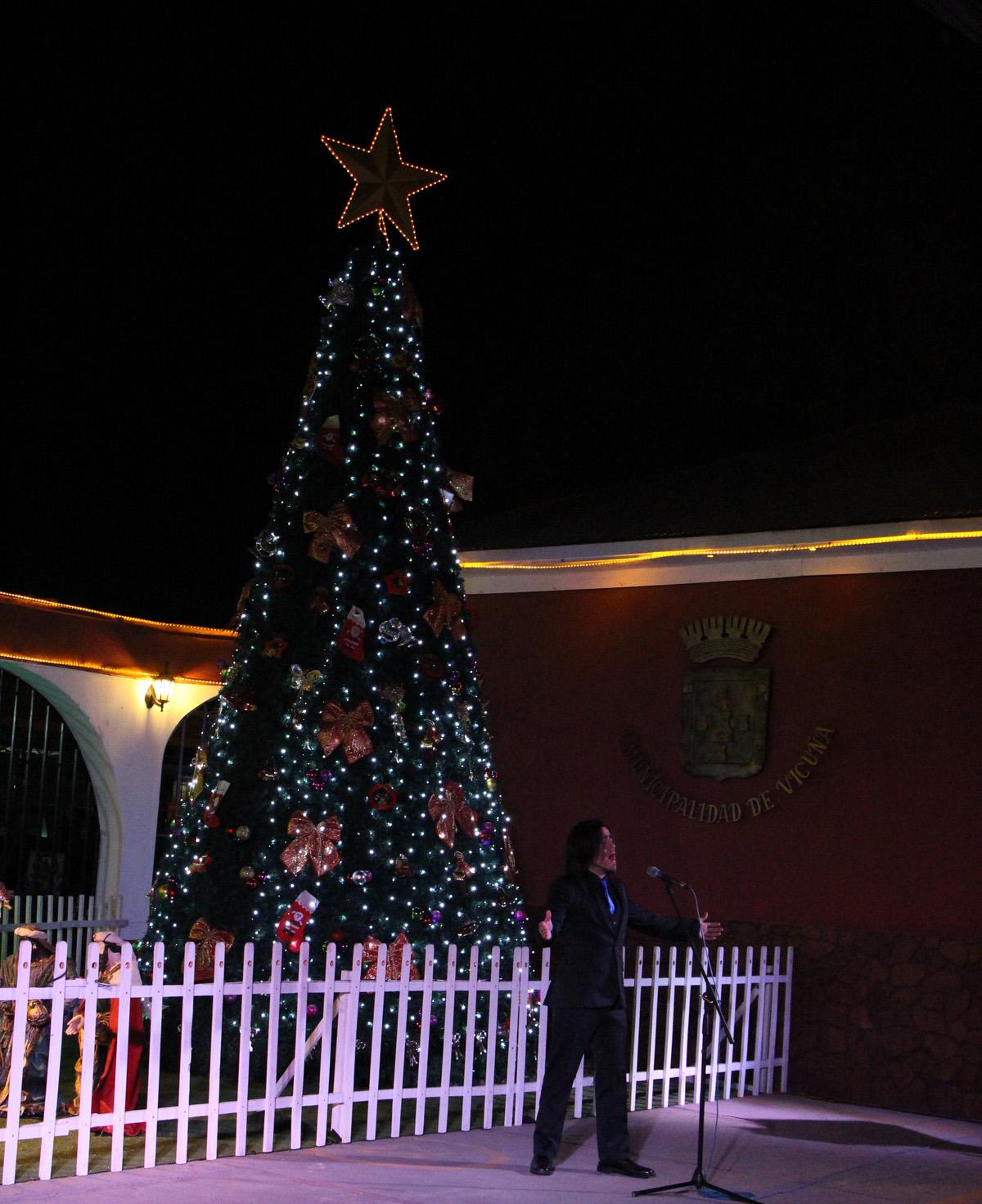 Photo of Se comienza a vivir la Navidad en Vicuña con el encendido del árbol e instalación del pesebre