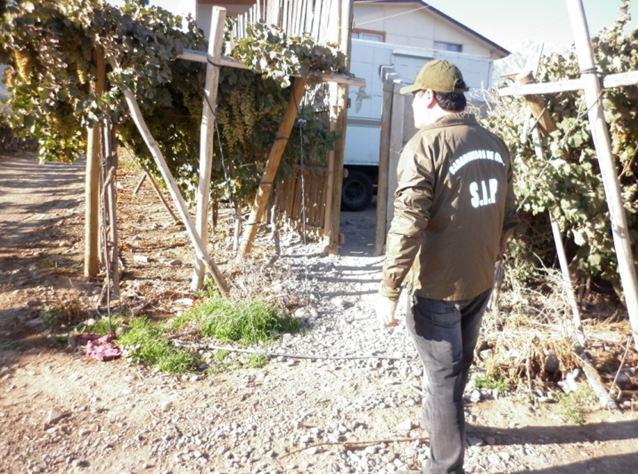 Photo of Hombre fue detenido en un sitio eriazo por robo con violencia y porte de arma blanca