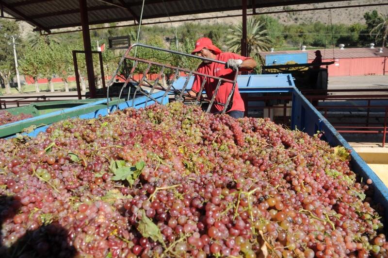 Photo of Permiso especial para el agro durante la cuarentena será canalizado por la Seremi de Agricultura e INDAP
