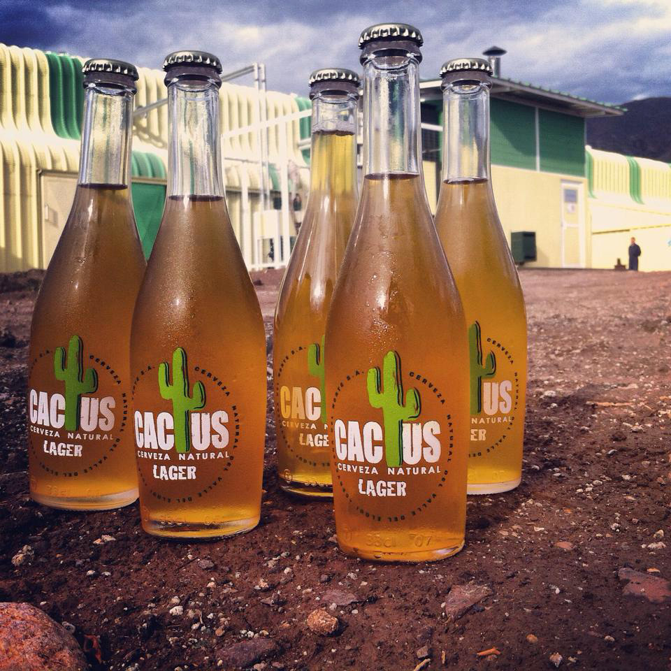 """Photo of Como una cerveza natural del Valle del Elqui """"Cactus"""" se lanza al mercado premium"""