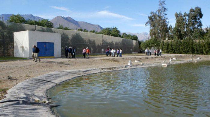 Photo of Vecinos de población Juan Pablo II felices con aprobacion ambiental de nueva planta sanitaria