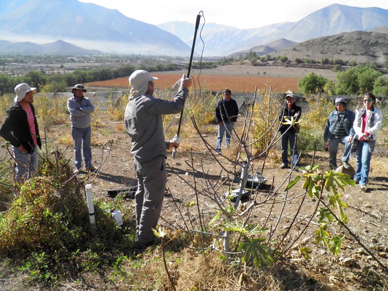 Photo of SAN y CORFO capacitan agricultores en medición de necesidades de riego y sistemas de monitoreo