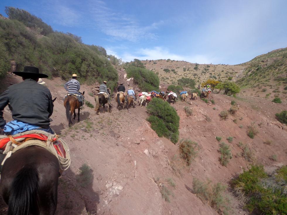 Photo of Huasos de Peralillo y Lourdes rememoran antigua ruta utilizada hacia la Fiesta de Andocollo