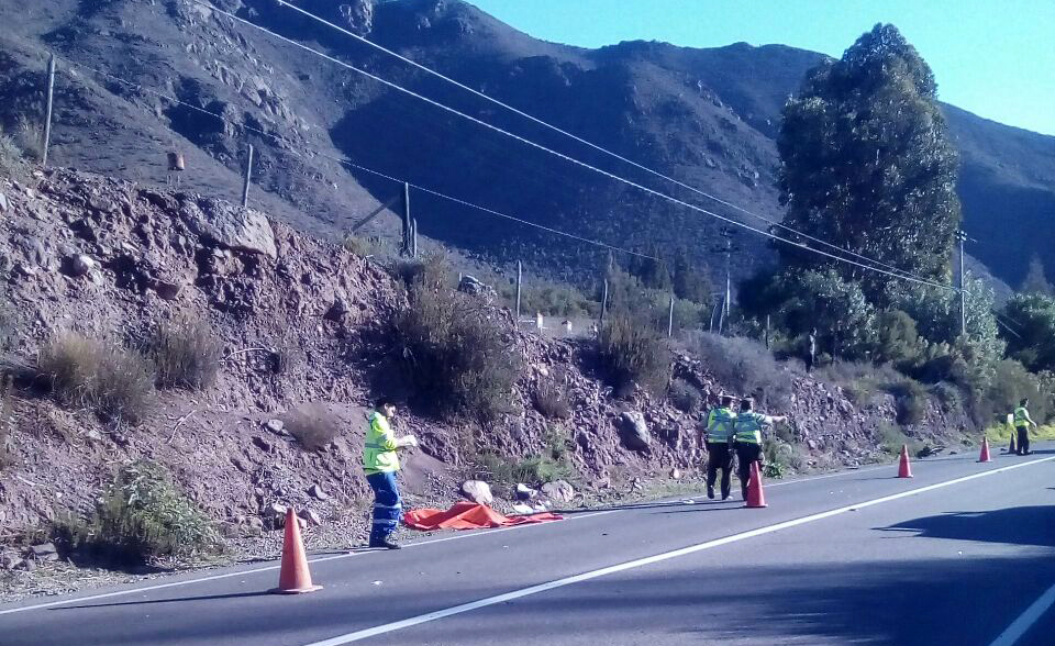 Photo of Vecino de Marquesa fallece producto de atropello en ruta internacional sector El Almendral