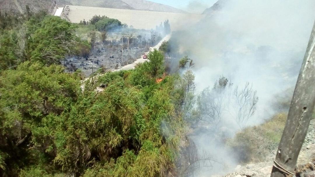 Photo of Incendio de Puclaro quemó vegetación e infraestructura de seguridad de la JVRE