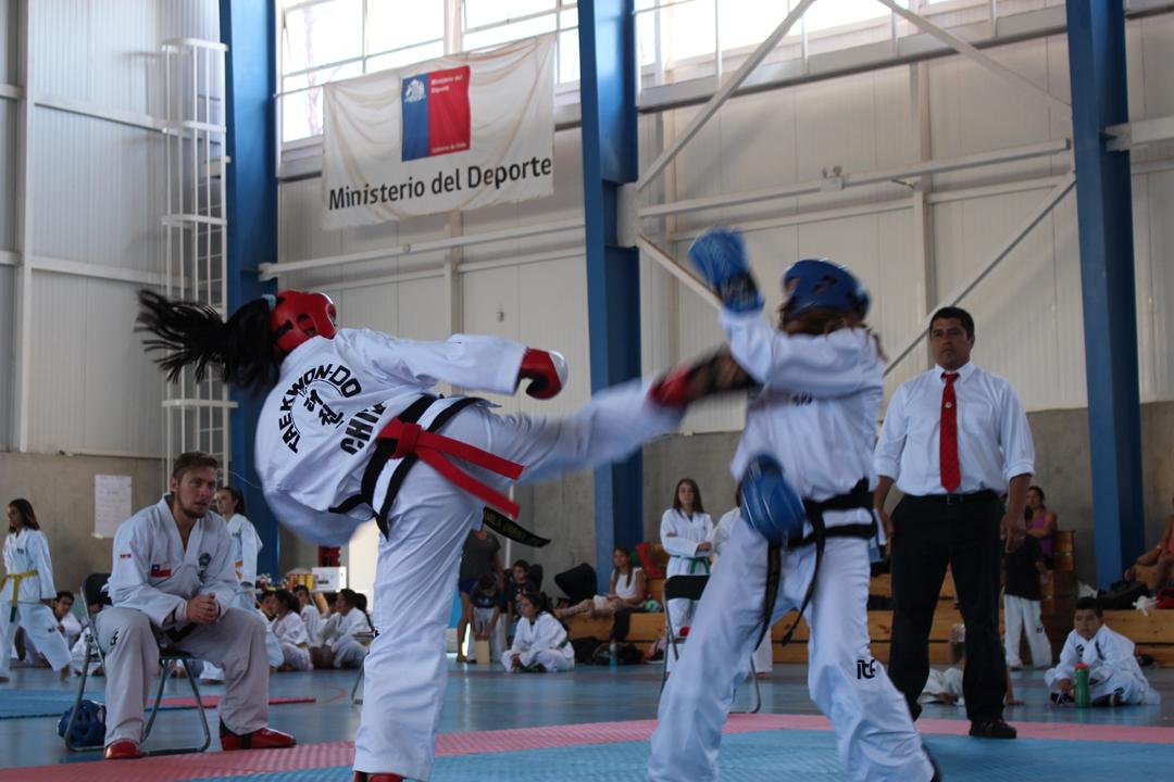 Photo of Luchadores de la región y el país participaron en el primer campeonato nacional de Taekwondo ITF de Vicuña