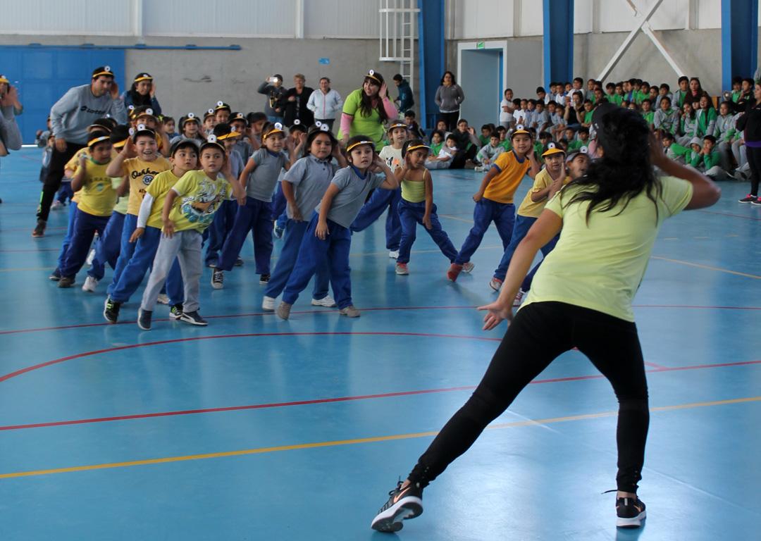 Photo of Hábitos de vida saludable se toman los establecimientos educacionales de Vicuña