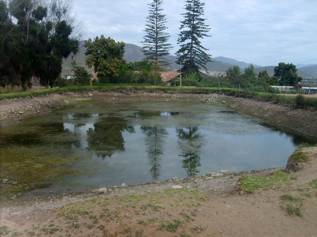Photo of Regantes de Coquimbo podrán postular a concurso de $2.500 millones para rehabilitación de tranques ex CORA y obras de acumulación