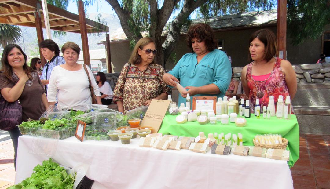 Photo of Emprendimiento femenino: Rasgos de Sol, una experiencia de éxito en Vicuña