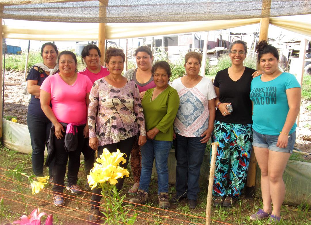 Photo of Usuarias de programa para mujeres campesinas intercambian experiencias como floricultoras en Altovalsol